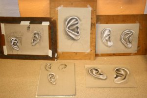 Malkurs-Teilnehmerarbeiten Ohr-Studien
